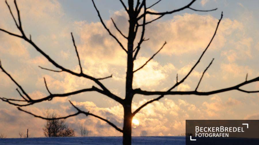 Sonnenaufgang in Ormesheim